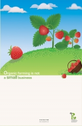 <h5>Rosoly Farmers' Market. Poster 2</h5>