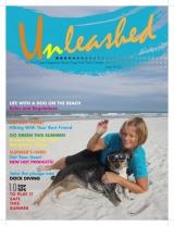 <h5>Magazine Cover</h5>