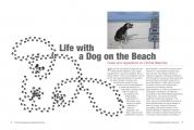 <h5>Magazine Page Layout</h5>